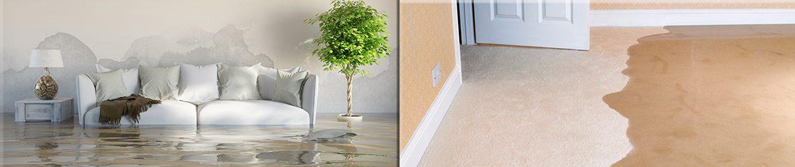 PD.com, FloodandWater