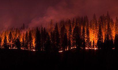 Dec-Wildfire-2016
